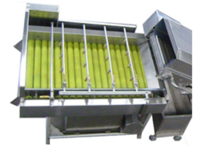 Vega Del wash 15 машина для мойки овощей барботажная мойка