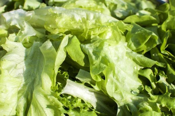 деликатная мойка листья салата