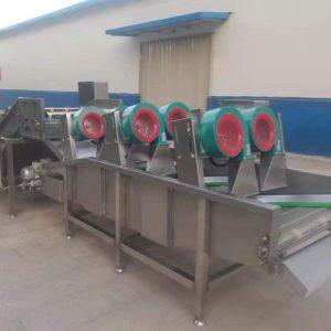 Машина Vega Drying Conveyor 300 сушка зелени, фруктов, овощей, ягод Vega Drying Conveyor 300