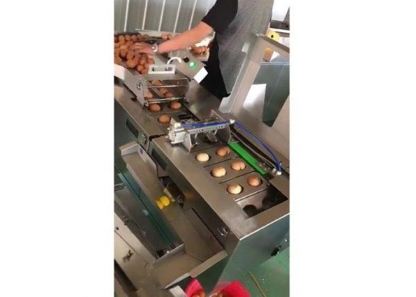 Промышленный сепаратор желка и белка куриного яица Vega Egg Separator 6000